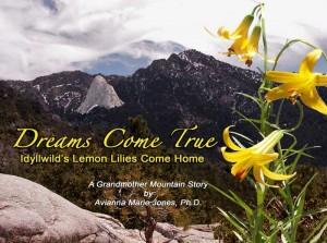 Dreams-Come-True-Cover