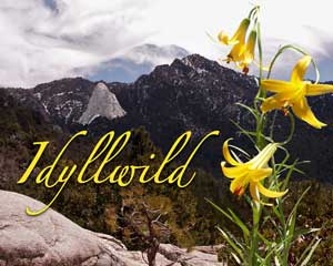 Idyllwild-image-for-web
