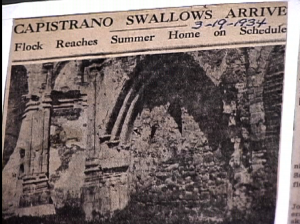 1934 article about the famous swallows